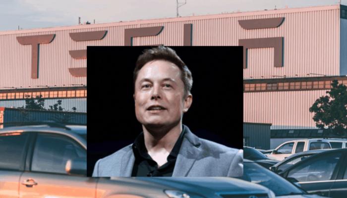 Elon Musk Recommended Books: Reading List Update