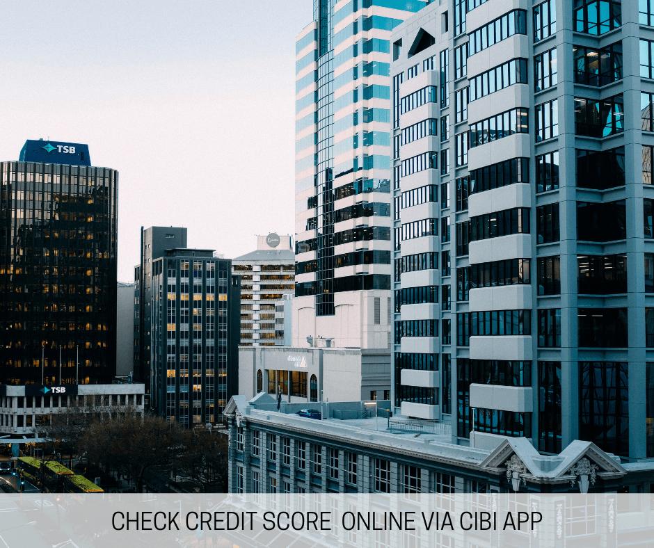 Check Credit Score Online via CIBI App